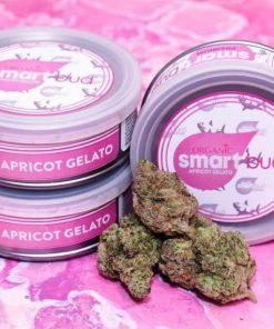 Buy Apricot Gelato Smart bud Online