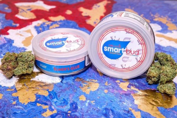 Buy Elmer's Glue smart bud Online